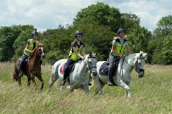 Hatfield Forest Ride